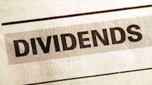 What factors to look for in dividend shares
