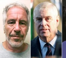 Prince Andrew lobbied US government for 'favourable' Epstein plea deal, court documents claim