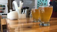 Regina coffee shop brews up something different with kombucha on tap