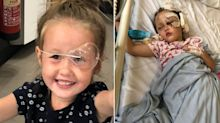 Savage 'pitbull' mauls girl aged four, but owner blames HER for 'getting too low'