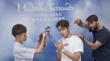 Jackson王嘉爾年中來港為蠟像揭幕 6小時量身不進食:不忘初心