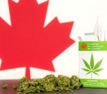 Marijuana Stocks Soar Again As Wall Street Eyes U.S. Imports