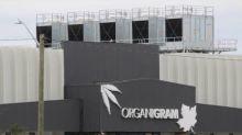 Organigram admits role in Moncton legionnaires' disease outbreak