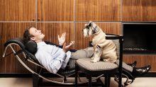Darum sind Menschen, die mit ihren Haustieren reden, intelligent