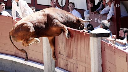 The bull market goes way beyond tax reform