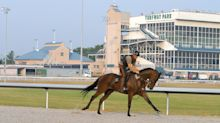 Turfway owner fires back in NKY horse racetrack battle