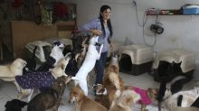 AP PHOTOS: Peruvian woman provides home for 70 stray dogs