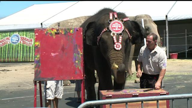 Elephants Paint Masterpieces For Military Kids