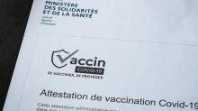 Lancement d'un pass sanitaire spécial pour les expatriés français vaccinés à l'étranger