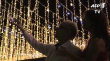 Luces, selfis y arbolitos de pino en una Caracas reanimada por la Navidad