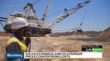 South32 CEO Says Hermosa in Arizona 'Most Exciting' Base Metals Project