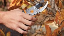 'Cuts like a hot knife through butter:' Amazon's best-selling pruning shears are only $13