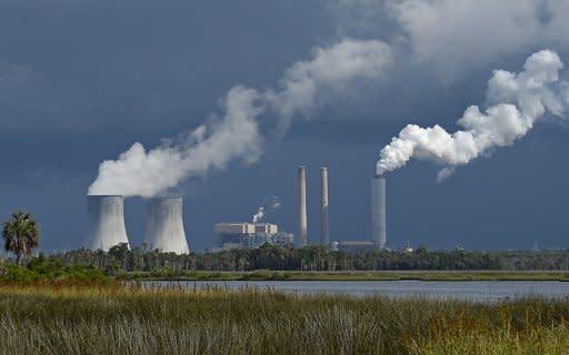 Frustracin en el norte de Florida por cancelacin de plantas
