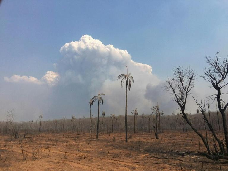 A general view of the fires in the Bolivian Amazonian area of San Jose de Chiquitos in Santa Cruz, on September 9, 2019