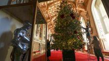 A família real decorou castelo com árvores de Natal gigantes