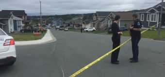 Victim found dead in Conception Bay South driveway had been abducted, police say