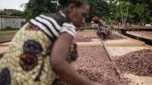 Mondelez expands programs for women cocoa growers