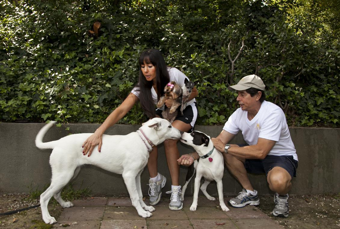 In this Friday, May 11, 2012 photo, DogVacay host and home owner Tracie Sorrentini, left, holds her small dogs, Punky, left, and Puccini, as her father Irving Sorrentini helps with hosted dogs, Yuki, left, and Lexi, right, at her Paw Hills pet resort in Los Angeles. DogVacay brings together dog lovers with casual and professional dog sitters to provide an affordable experience for pets. (AP Photo/Damian Dovarganes)