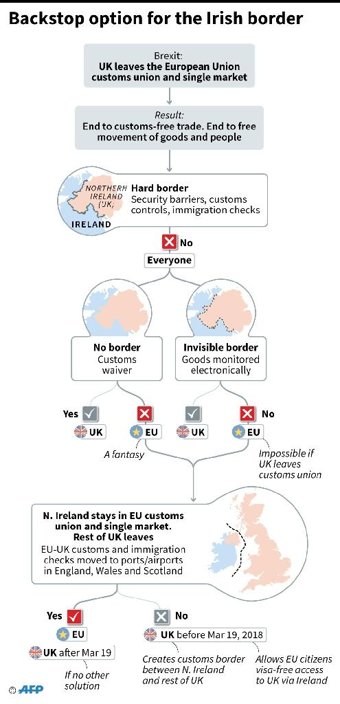 Possible options for resolving the problem of the Irish border after Brexit (AFP Photo/Gillian HANDYSIDE)