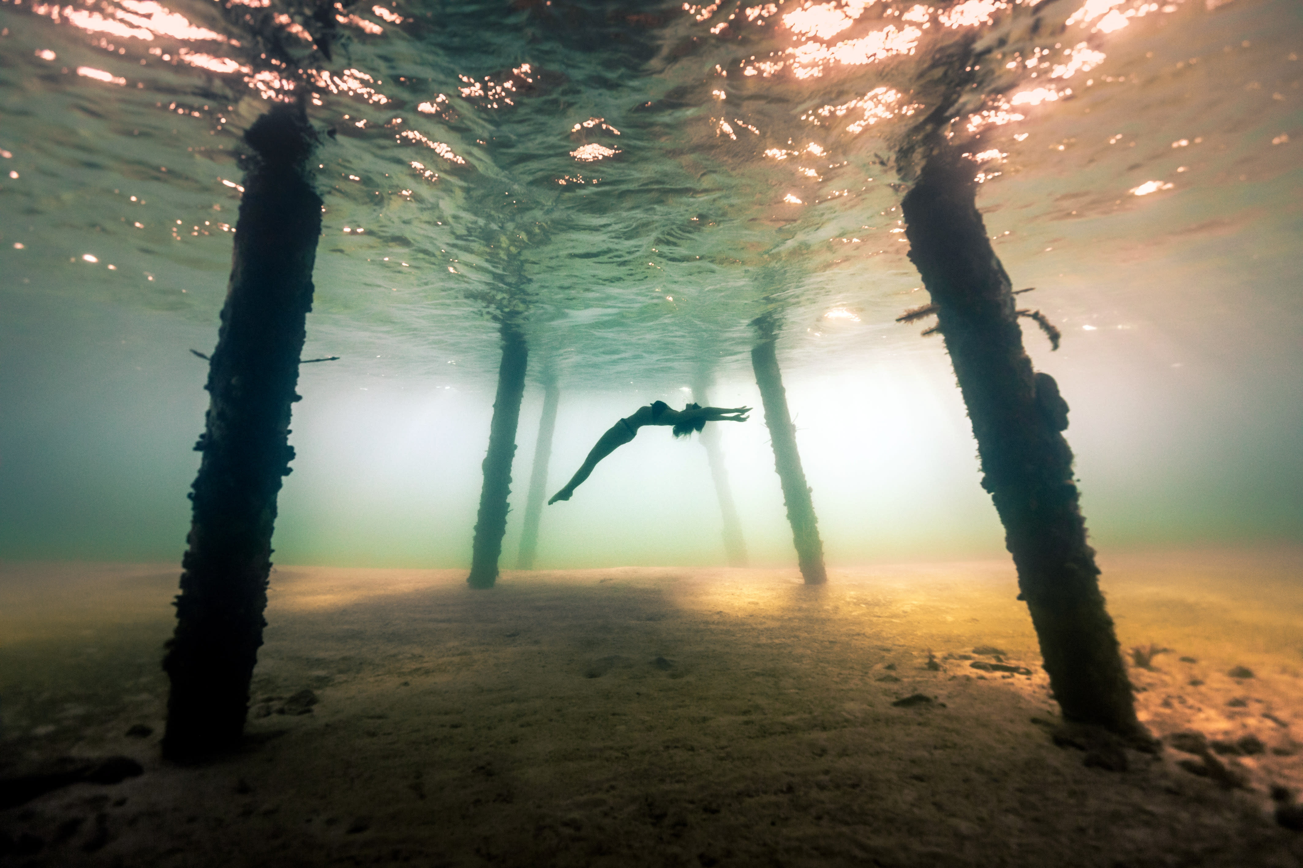 <p>A diver swims in the shallow water under a pier. (Photo: Alex Voyer/Caters News) </p>