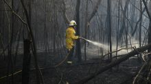 Minister pillories NSW fire ban breaches