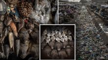 'Streets of horror': Wildlife trade continues despite coronavirus warning