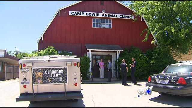 More Dirty Secrets Spilling Out About Camp Bowie Animal Clinic