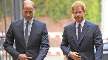 Realeza: por qué las charlas por Zoom entre Harry y William son cada vez más formales