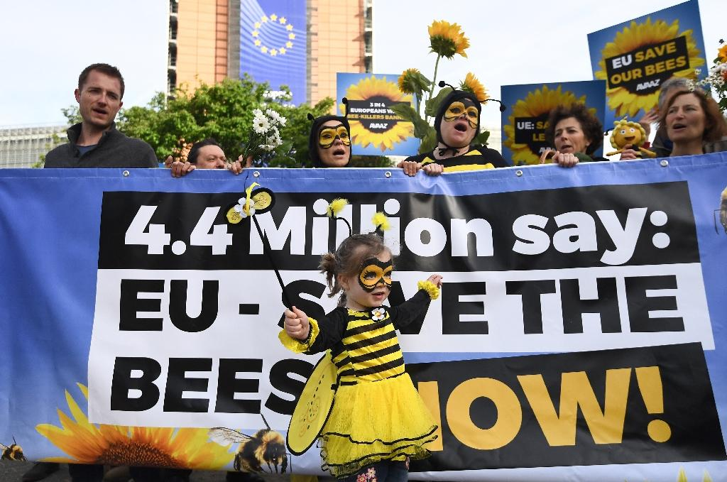 Activists have staged protests demanding a ban on pesticides blamed for killing off bees