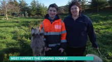 Phillip Schofield left in tears by Harriet the 'singing' donkey