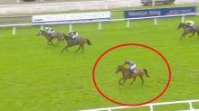 'Unbelievable': Racegoers stunned as winning horse goes 'walkabouts'