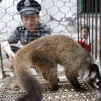 Coronavirus news - live: China warns virus's ability to spread is getting stronger as it bans wild animal trade