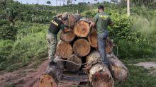 Ibama pede investigação contra agentes que atuaram para expulsar famílias de terras indígenas