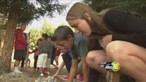 Hands on education at Clovis West's on-campus pond
