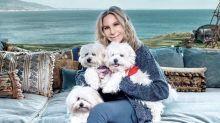 Insólito: Barbra Streisand revela que sus nuevas mascotas son clones de su perra muerta