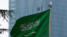 UAE voices support for Saudi king statement on journalist's death: WAM