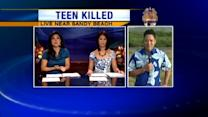 Deadly hit-and-run leaves teen dead
