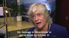 Ann Widdecombe: Nation has sent clear Brexit message to Westminster