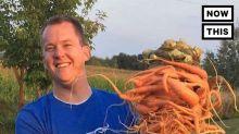 This man thinks he grew the world's heaviest carrot