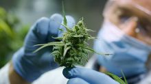 Here's Why This Pot Stock May Stand Out As Coronavirus Stokes Demand