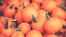 Pumpkin power: 6 health benefits to Halloween's statement squash