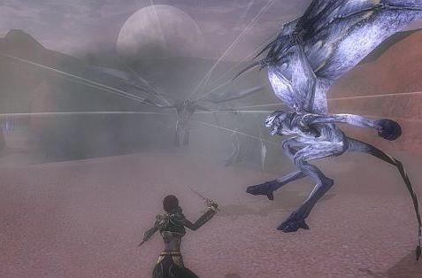 DDO changes direction, focuses on player feedback