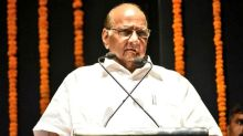 Sharad Pawar Says Pakistanis Are Very Welcoming, Terms Article 370 Repeal as 'Decision Against Minorities'
