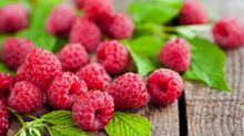 Grow to eat: plant delicious autumn-fruiting raspberries this weekend