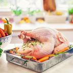 CDC Reports Widespread Salmonella Outbreak From Eating Turkey