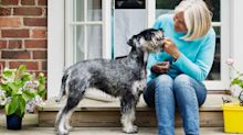 Dog owners are more likely to live longer, study shows