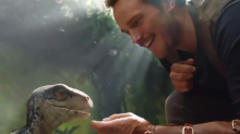 """The first footage of """"Jurassic World 2"""" is here, and it's just Chris Pratt petting a dinosaur"""