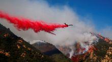 Miley Cyrus y Neil Young pierden sus casas por los incendios en Malibú