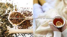 抗氧化、助眠、抗過敏!繁忙都市人必備:「南非國寶茶」的7大神奇功效!