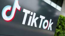 Kickboxer throws down challenge to Pakistan's TikTok ban